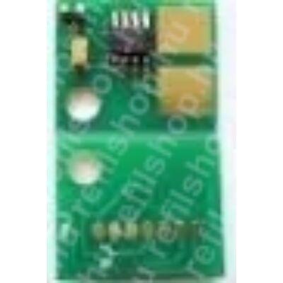 Chip Dell 2500  (KR)